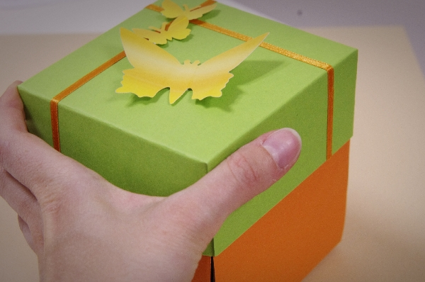Karten, Schachteln, Taschen & Verpackungen (13)